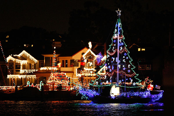 Christmas Sailing Cruise Special
